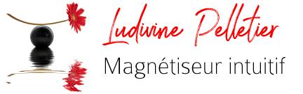Magnétiseur Intuitif en Vendée Logo